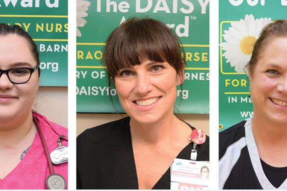 A group of photos show DAISY Award winners.