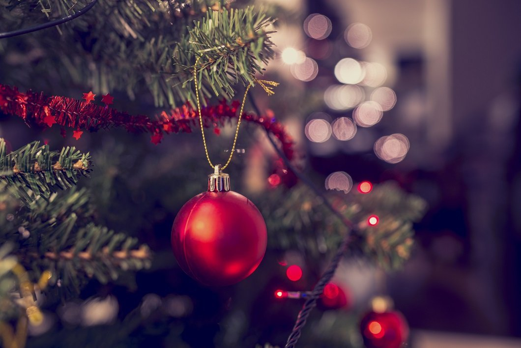 """Christmas trees are tied with """"knots"""" in honor and memory of cancer patients."""