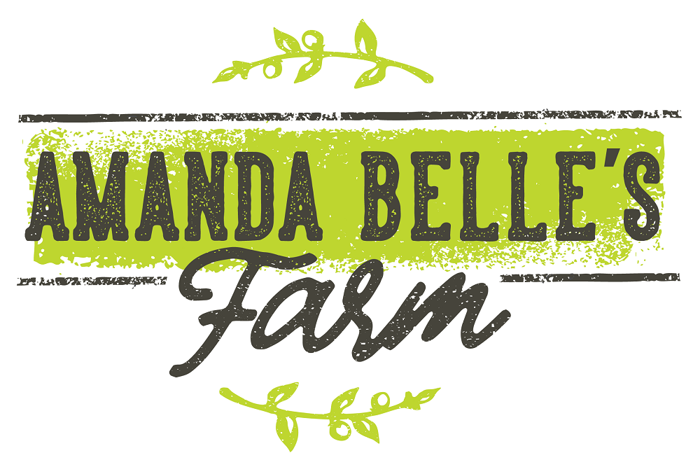 A logo that says Amanda Belle's Farm in gray lettering with green leaves above and below.