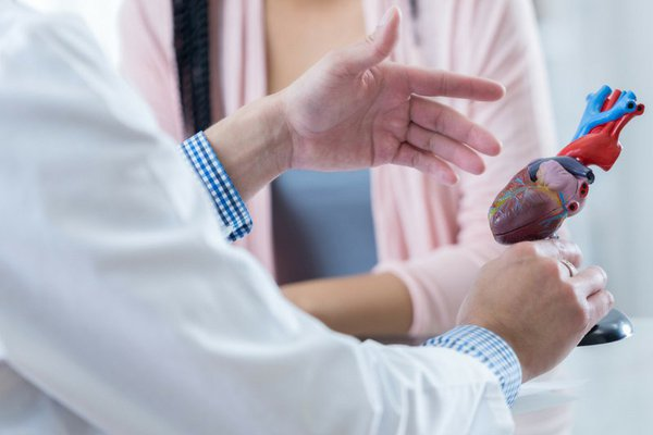 A provider shows a model of a heart.